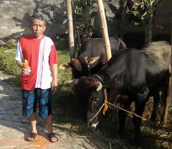 Ketua PAC Candirenggo Singosari bersama Hewan Kurban